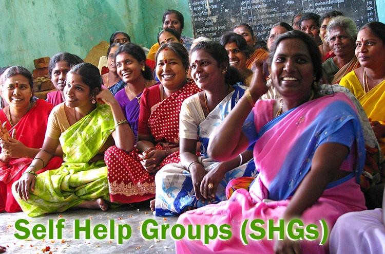 Self Help Groups (SHGs)